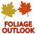 Foliage-Outlook