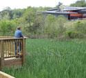 Wetland-Trail