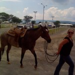 Roanoke Valley Horse Show