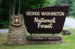George Washington Nationla Forest
