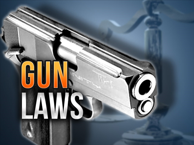 Virginia panel votes down push for stricter gun laws