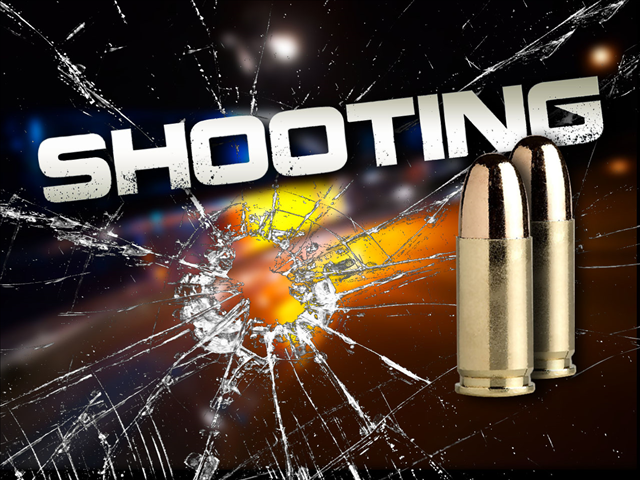Two men shot overnight along Williamson Road