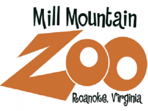 Music amongst the zoo animals: Acoustic Fest is coming