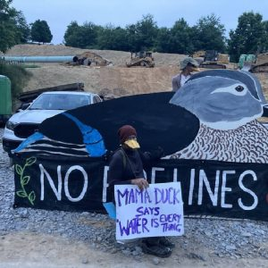 MVP protesters using large wooden duck to block pipeline easement
